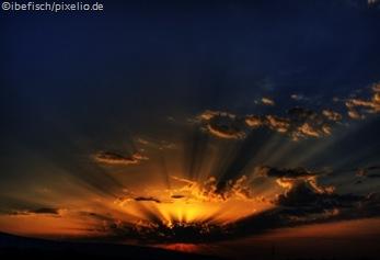 265686_web_R_K_by_ibefisch_pixelio.de